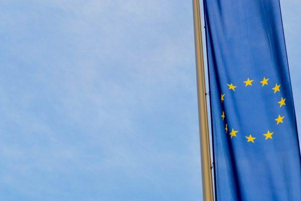 Victor Seidler, Making Sense of Brexit