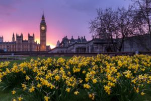 Spring Statement, Brexit Bombshells, & Clued Up For ISA Season